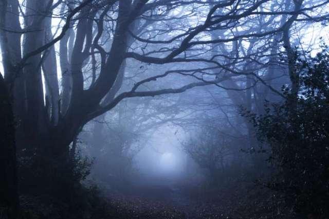 solstice in mist